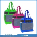 Polyester Cooler Bag (China)